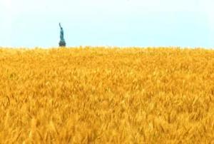 denes_wheatfield_m
