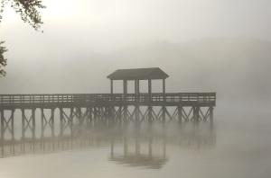 Lake_Mist7_%286330222345%29