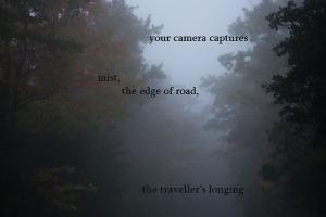 traveller's postcard